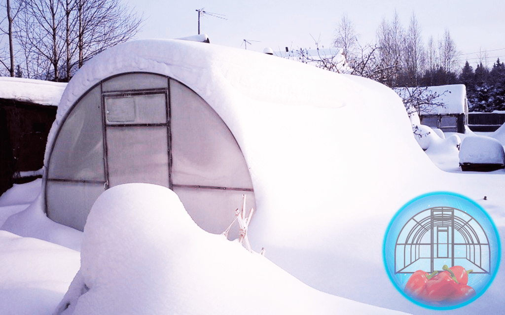 теплица под снежной шапкой